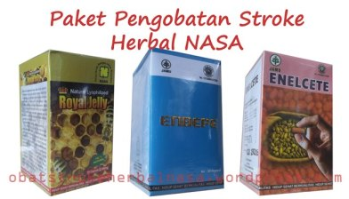 Paket Pengobatan Stroke Herbal NASA
